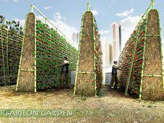 Babylon Garden - All For Garden Veg Garden, Vegetable Garden Design, Fruit Garden, Urban Agriculture, Urban Farming, Vertical Farming, Vertical Gardens, Potager Bio, The Farm