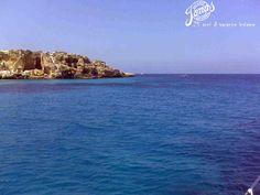 Le Isole Egadi offrono un mare dalle paradisiache sfumature di celeste. Il comodo imbarco da Trapani è l'ideale per scoprire in sette giorni il triangolo delle Isole Egadi formato da Favignana, Levanzo, Marettimo ed alcuni scogli tra i quali gli Asinelli, Maraone e Formica. Noi di Jonas, le proponiamo con 2 imbarcazioni differenti: la barca a vela o il catamarano.  http://www.jonas.it/isole_egadi_catamarano_301.html http://www.jonas.it/egad_sub_1175.html
