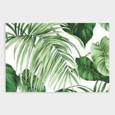 Transform your space with our wallpaper wall mural featuring a green tropical leaf motif against a black backdrop. Easy to position and reposition during installation, it's a bold way to easily refresh a room with a relaxed, island-inspired vibe. Leaves Wallpaper, Wall Wallpaper, Zoo Decor, Wall Decor, Striped Room, Black Leaves, White Leaf, White Backdrop, Tropical Leaves