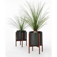 Modernica Small Charcoal Pot with Stand