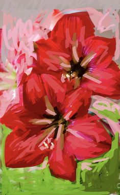 Red Amaryllis 2020 Still Life, Floral, Artwork, Plants, Red, Painting, Work Of Art, Auguste Rodin Artwork, Flowers