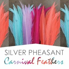 We Cater to Carnival Buyers Pheasant Feathers, Carnival, Nyc, Silver, Shopping, Style, Fashion, Swag, Moda