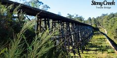 The Stony Creek Trestle Bridge is one of the hidden Gippsland Tourist attractions.Nestled in a state forest its one of the great places to see in Gippsland Great Places, Places To See, State Forest, Victoria Australia, Stony, Family Travel, Touring, Coastal, Bridge