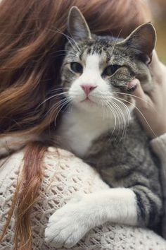 January 24th is Change A Pet's Life Day! It's a chance to celebrate making positive changes in cats' lives, to raise awareness about shelter animals in need of homes, and to encourage adoption.