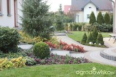 Ogród Sylwii od początku cz.II - strona 966 - Forum ogrodnicze - Ogrodowisko