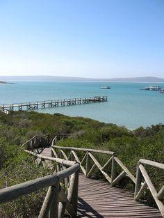 KRAALBAAI BLISS - This is undoubtedly one of my favorite picnic spots on the West Coast!!!!  #kraalbaai #westcoast #naturereserve #southafrica #lagoon #pier