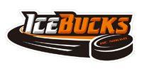 Asia League Ice Hockey logos - Google Search