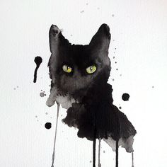 Cat http://aspirexd.tumblr.com/