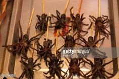 Image result for chinese skewers