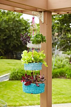 Since we all crave different flavors daily give yourself room to grow lots of summer herbs. Since we all crave different flavors daily give yourself room to grow lots of summer herbs. Jardim Vertical Diy, Vertical Garden Diy, Vertical Gardens, Diy Hanging, Hanging Planters, Hanging Basket, Diy Garden Projects, Garden Crafts, Garden Ideas