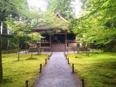 三千院、往生極楽院#kyoto#japan#sanzenin#green#travel#trip##temple#buddhism#buddha#日本#旅#京都#お寺#寺院#instagood #instagram #photo #photoftheday #ig_japan #ig_travel
