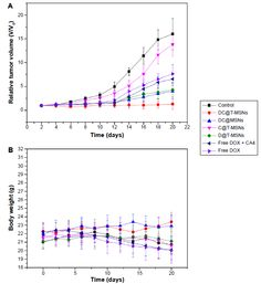 Figure 7 Tumor growth (A) and weight change (B) profiles of HeLa-bearing mice after different treatments.