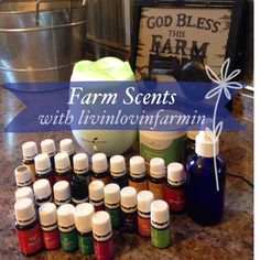 Using Essential oils on the farm and in the garden. For livestock, garden and home. Dairy cows, chickens, pigs, goats. Order with Farm scents and get a FREE gift!!.  For tips and tricks follow Farm Scents on facebook | homestead:
