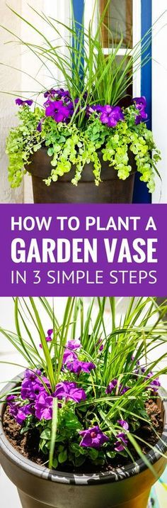 Planting a Perfectly Proportioned Garden Vase -- 3 simple steps to planting a garden vase that will be a beautiful focal point for your front porch, patio, or deck! | garden vase ideas | front porch ideas | how to plant flowers in large planters | how to plant flowers in pots outdoors | how to plant outdoor planters | planting in pots ideas | outdoor garden vase | large garden vase #planter #flowers #frontporch #patio #deck #unsophisticook