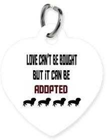 #CafePress                #love                     #Love #Cant #Bought #Adopted #Tags> #Pets> #Healing #Raine                    Love Cant Be Bought But It Can Be Adopted Pet Tags> Pets> A Healing Raine                               http://www.seapai.com/product.aspx?PID=613211
