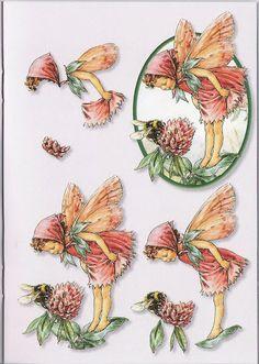 3D Mini 01 - Flower fairies - linda statham - Picasa Web Albums