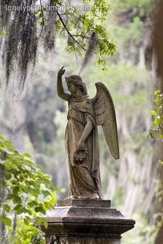 Angel sculpture at Bonaventure Cemetery in Savannah, GA.Garden of Good and Evil...Midnight!