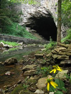 Natural Tunnel State Park (VA) - 950 acres, hiking, camping, cabins, pool, chair lift