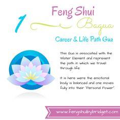 feng shui bagua floor plan financial challenges no career recognition musculoskeletal. Black Bedroom Furniture Sets. Home Design Ideas