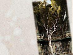 Kitaplar ve Mesafeler