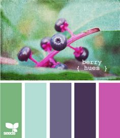 My new color palette ... Minus the pink. I don't do pink.