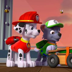 Watch as Chase, Marshall, Rubble, Rocky, Zuma and Skye try to help collect Farmer Yumi's crops. But the pups need some help from Ryder in this video. Paw Patrol Rocky, Los Paw Patrol, Paw Patrol Pups, Paw Patrol Cartoon, Cartoon Dog, Paw Patrol Full Episodes, Personajes Paw Patrol, Marshall, Furry Art