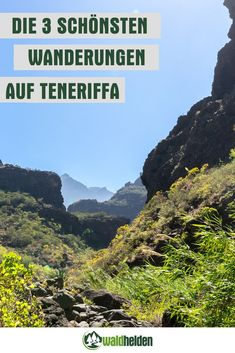 Die 3 schönsten Wanderungen im Norden von Teneriffa.
