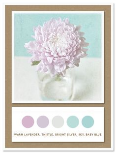 Colour Palette: warm lavender, thistle, bright silver, sky, baby blue
