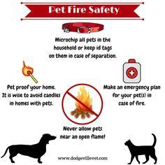 Pet Fire Safety www.dodgevillevet.com