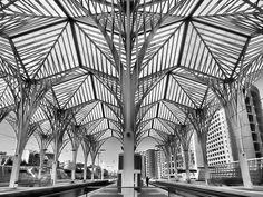 Gare do Oriente, Lisboa / by Santiago Calatrava