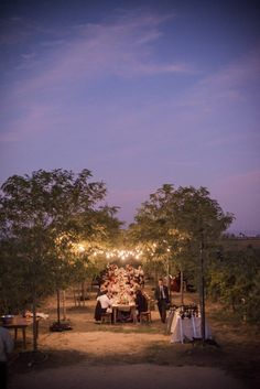 al fresco dinner under twinkling lights