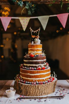 This 3 tiered naked wedding cake looks picture perfect with its minature felt-mice cake topper. Photo by Benjamin Stuart Photography #weddingphotography #weddingcake #nakedcake #mice #3tier #rusticcake #weddingidea