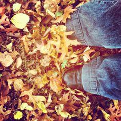 Ich liebe durch #herbstlaub laufen - @bloginfo- #webstagram