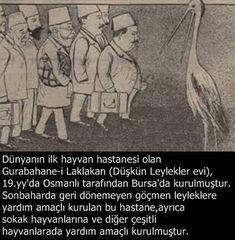 """Bursa'da 19. yüzyılda Osmanlılar tarafından, başta sakat leylekler olmak üzere göçmen kuşların bakımının yapılması amacıyla kurulan ve Türkiye'nin ilk hayvan hastanesi olan """"Gurabahane-i Laklakan"""" Düşkün Leylekler Evi #OsmanlıDevleti #DünyaSokakHayvanlarıGünü"""