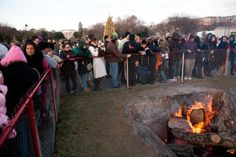 See Photos of the National Christmas Tree: Yule Log by the National Christmas Tree
