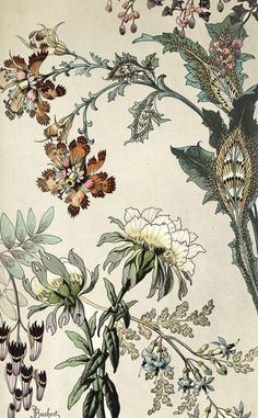 Anthropologie S New Arrivals Decorate Your Walls Toile