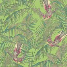 Sunbird (W6543-03) - Osborne & Little Wallpapers - An exotic bird of paradise with boldly coloured leaves, darting through a leaf jungle background.  Shown in the  cerise pink, metallic gold and green on a green background. Please request a sample for true colour match.