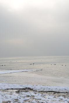 Winterstimmung mit Nebel