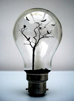 A different take on a light bulb: ideas can grow. light-bulb crafts This is great the way you can use a light bulb more then one thing its a art work on its own. Light Bulb Art, Light Bulb Crafts, Cool Stuff, Creative Photos, Creative Things, Creative Ideas, Pics Art, Photo Manipulation, Belle Photo