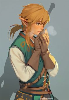 Así será Link en la próxima entrega de 'The Legend of Zelda' que se estrenará en 2017