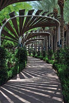 Arched walkway, downtown Phoenix, AZ More #landscapearchitecture #gardenplanningarchitecture