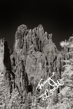 From the Cathedral Spires Trail, Needles Highway South Dakota.  Infrared.  www.tracylovett.com