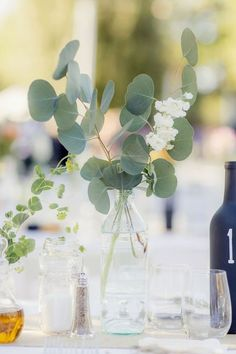 Silver dollar eucalyptus, With amber colored bottles