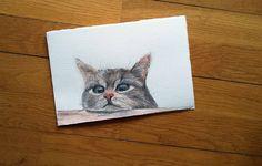 Piccolo formato, gatto, acquerello e matita -   SOLD