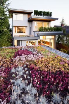 .. Here we can see more of its appeal. The roof itself is pretty, but it also is located to be seen by the upper floors in the adjacent house, which has its own planters and a smaller patch of green roof.