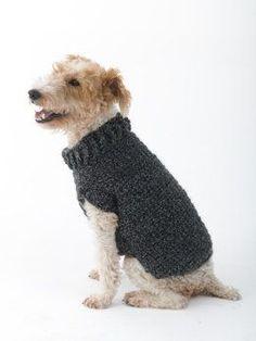 Poet Dog Sweater in Lion Brand Homespun - L32350