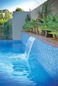 A raised lap pool with a water fall is the main feature of for Swimming pool design jobs