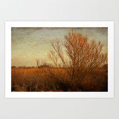 Orange winter Art Print by Anne Staub - $19.76