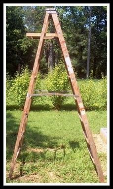DIY - How to use an old 8 ft Ladder in as many ways as possible!