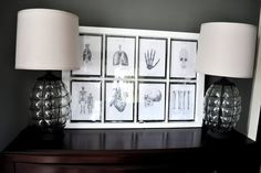 Loving this old window used to frame anatomical images - Halloween perfection!